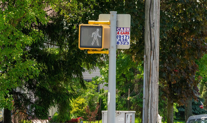 He's hit with 62 summonses for posting 'Cash 4 Cars' signs around S.I., D.A. says. That's $7K in fines.